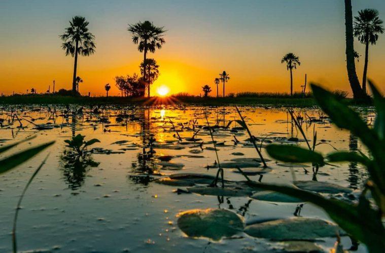 Corrientes: Iberá Este